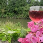 fireweed, brambletip and hymalyan balsam wine