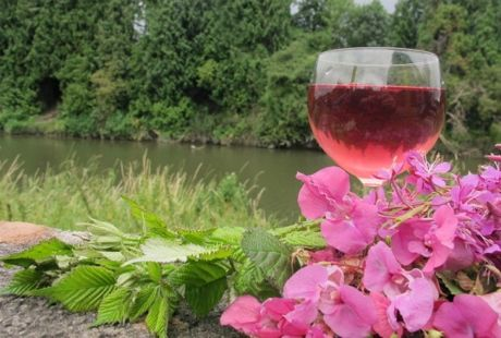 Andy Hamilton's fireweed, bramble tip and Himalayan balsam wine