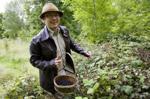 Andy Hamilton picking blackberries
